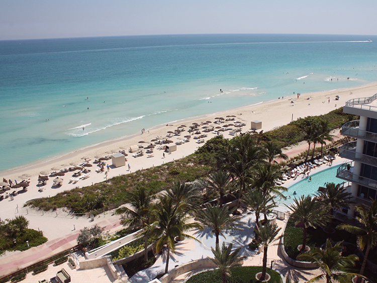 the Carillon hotel & spa Miami